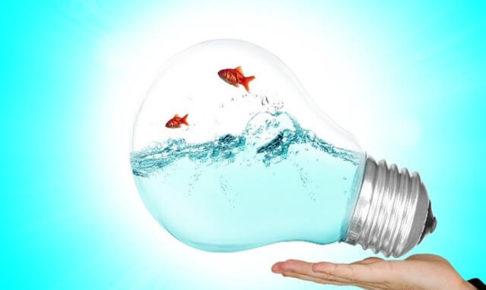 電球の中に金魚のアイデア