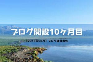 ブログ開設10ヶ月目【運営報告】